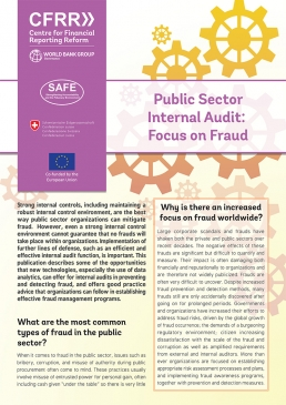 Public Sector Internal Audit: Focus on Fraud cover