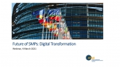Future of SMPs: Digital Transformation - the World Bank held an online meeting
